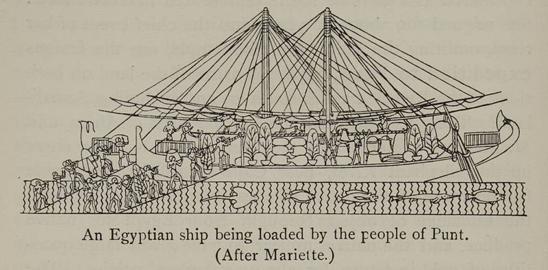http://en.wikipedia.org/wiki/File:An_Egyptian_ship_being_loaded_by_the_people_of_Punt._%281902%29_-_TIMEA.jpg